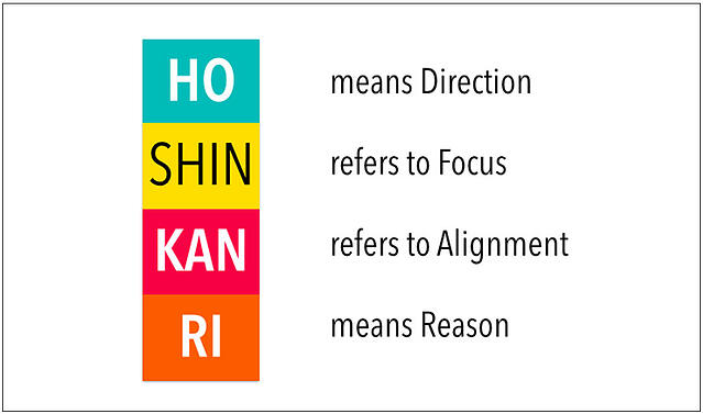 Hoshin Kanri for the Medical Industry